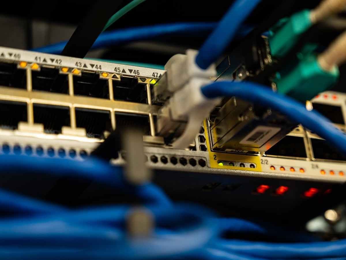 ethernet cables plugged in network switch