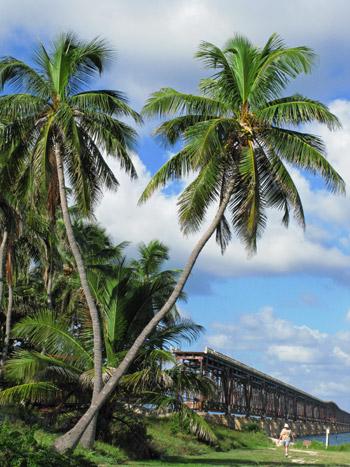 Bahia Honda State Park Florida Keys Beach Beaches In The