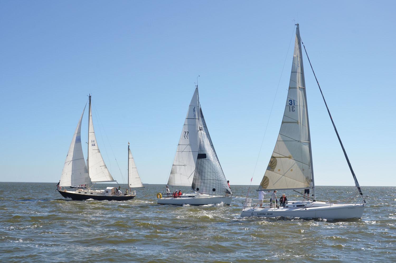 LYC Celebrates Success Of Bay Cup I Regatta Bay Area