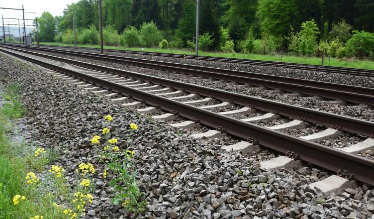 Bahnstrecke (Foto: berggeist007 / pixelio.de)