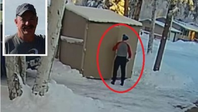Photo of بالفيديو .. وضع القمامة في الكوخ والتفت فرأى ما أصابه بالرعب