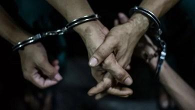 Photo of القبض على متهمين بسرقة «مواشٍ» بقيمة 4 آلاف دينار