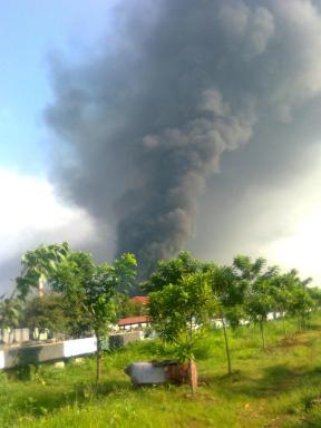 Alam Pedesaan Jakarta Nan Permai