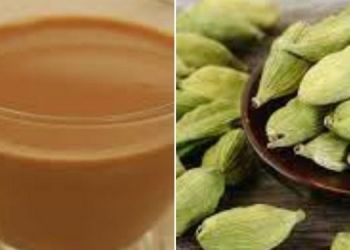 benefits-of-velchi-tea
