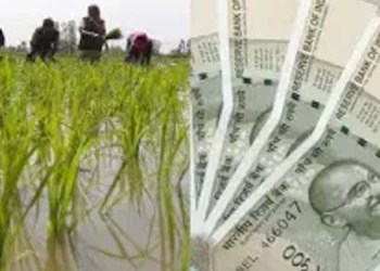 if you want rs 36000 in a year along with pm kisan money then register for this scheme now