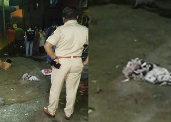 pune murder of criminal manish bhosale retired police anant oval arrested