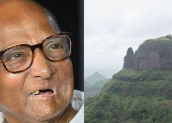 botanist-named-sahyadri-mountain-plant-after-ncp-chief-sharad-pawar-argyreia