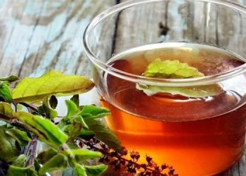 health-drink-tulsi-kadha-daily-to-remove-all-the-toxins-from-body-and-to-maintain-immunity