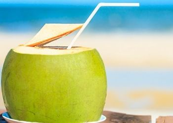 health-coronavirus-vaccination-can-coconut-water-help-reduce-after-effects-of-covid-19-vaccination