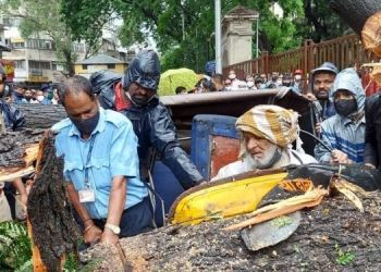 Pune Rain | A tree fell on a rickshaw in front of KEM Hospital in Rasta Peth, Pune; Woman injured with driver (video).