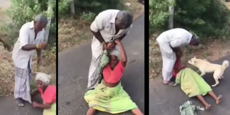 Viral Video son dragging mother on road for money pet dog showed loyalty to owner video viral