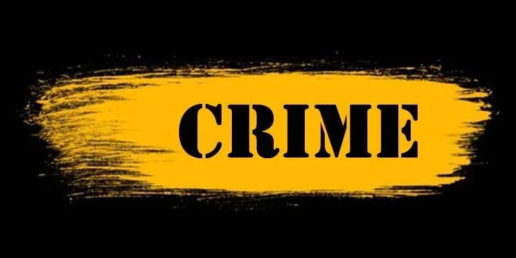 Pune Crime   cheating case news