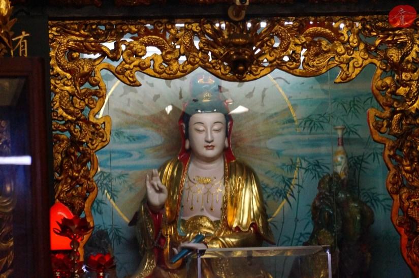 Temple_6964_10_comser3325.JPG
