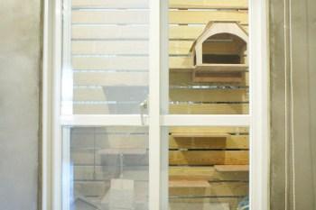 [室內設計裝潢] 我的小家工業風裝潢-主臥/客房/貓房/更衣室/主浴 成果發表