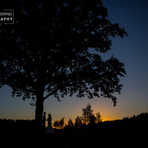 Sunset over the golf course with newlyweds and tree silhouetted against the colourful sky