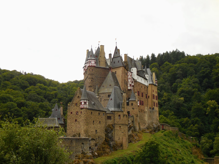 Burg Eltz sits on a hill surrounded by trees