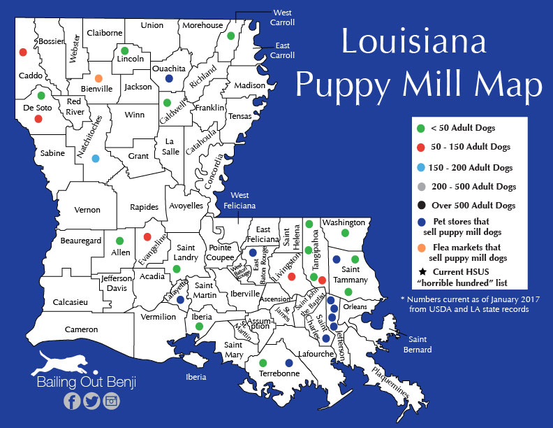 Puppy Mills by State – Bailing Out Benji