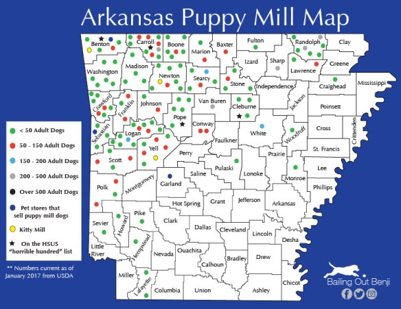 Puppy Mills by State | Bailing Out Benji