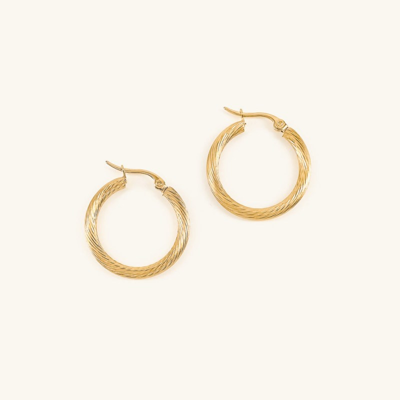 Gold plated Rome hoops earrings jewelry