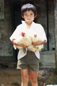 Boy with Chickens