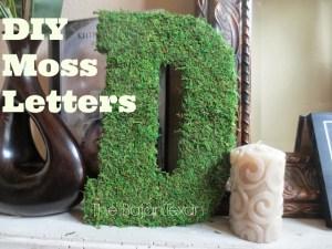 DIY moss letter