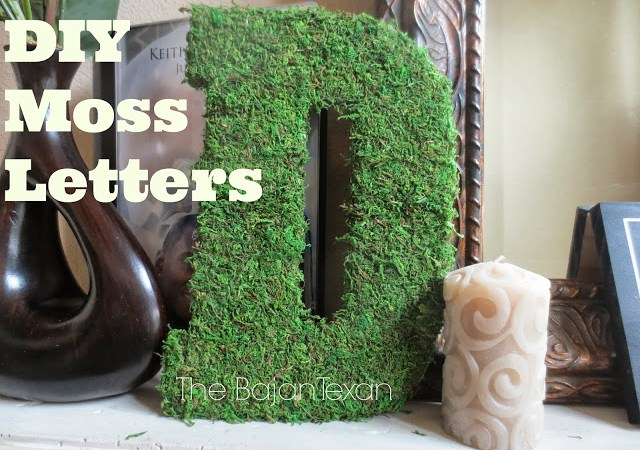 DIY Home Decor: Moss Letters