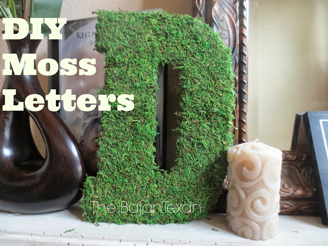 DIY Home Decor: Moss Letters - The best part of it is that they are so freaking easy to make! You literally have to buy two things...moss and a letter!