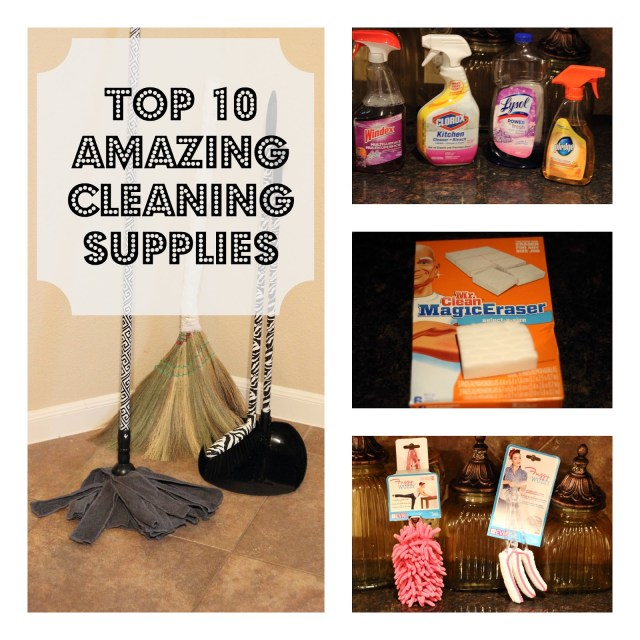 Top 10 Best Cleaning Supplies - Check out these commercial cleaners and products which you may find to be essential in your cleaning routine.
