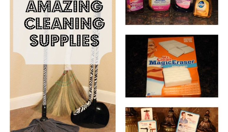 Best Cleaning Supplies (Spring Cleaning Series 3)