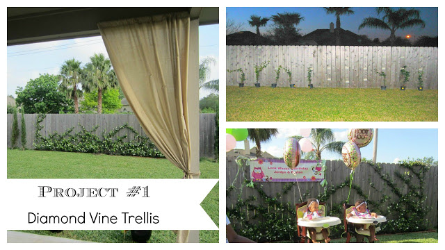 Diamond vine trellis