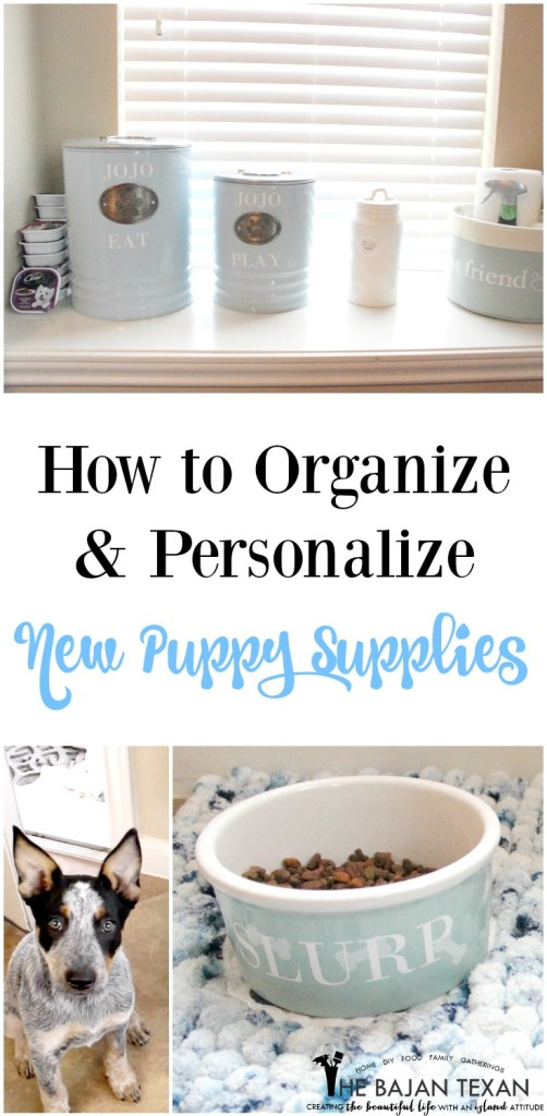 how to orgainze dog new puppy supplies