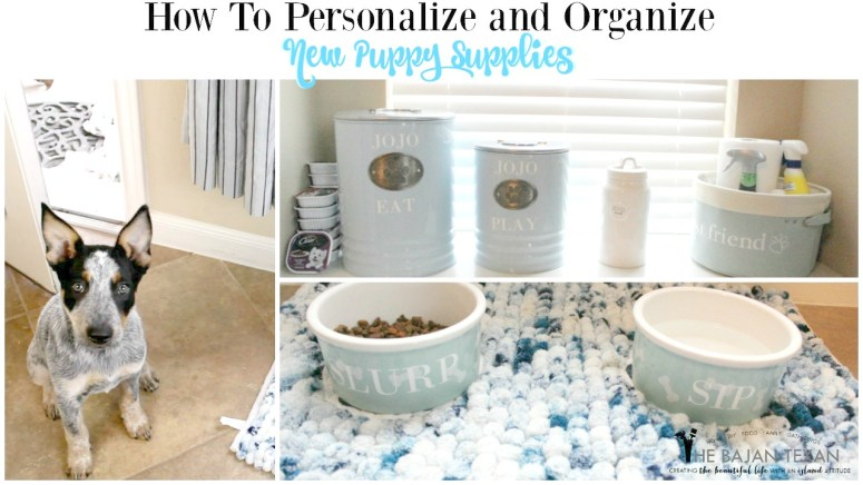 how to organize new puppy supplies