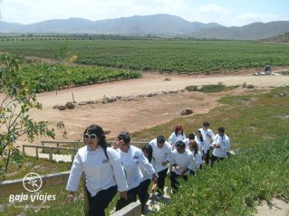 monte-xanic-valle-guadalupe-escuelas-tours