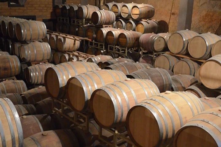 Barricas para vino en Vinícola Barón Balché, Valle de Guadalupe.