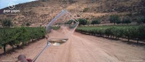 Degustación de Vinos en la Antigua Ruta del Vino, Valle de Santo Tomás, Ensenada, Baja California