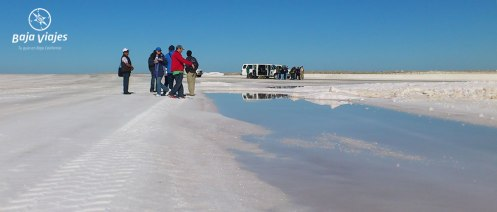 Tour a la Exportadora de Sal en Guerrero Negro, Baja California Sur