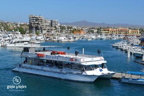 Barco catamarán en la Marina de Cabo San Lucas, durante el Tour en Los Cabos, Baja California Sur