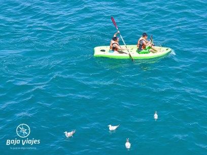 Kayak durante el paseo en barco en Los Cabos