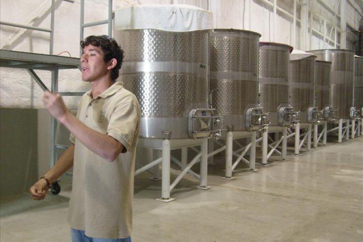 Guía Turístico dirigiendo un recorrido en la Vinícola L.A. Cetto en 2006