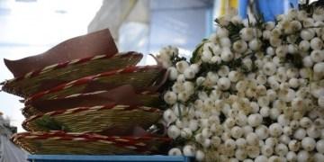 México: tercer lugar en producción de alimentos en AL 7