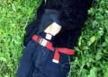 Aparece muerto hombre levantado anoche en Iguala 7