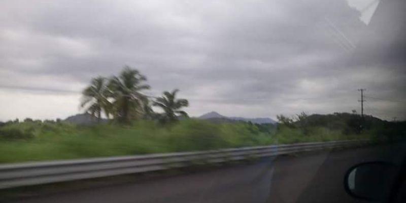 Colapsa vivienda y árboles en Guerrero por lluvias