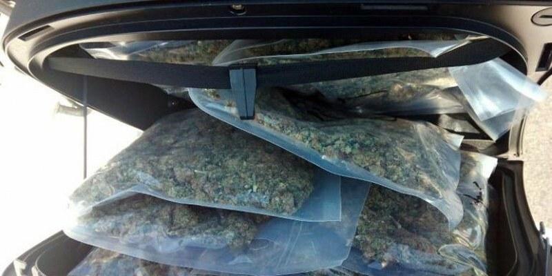 Hombres llevaban mariguana a de CDMX a Veracruz