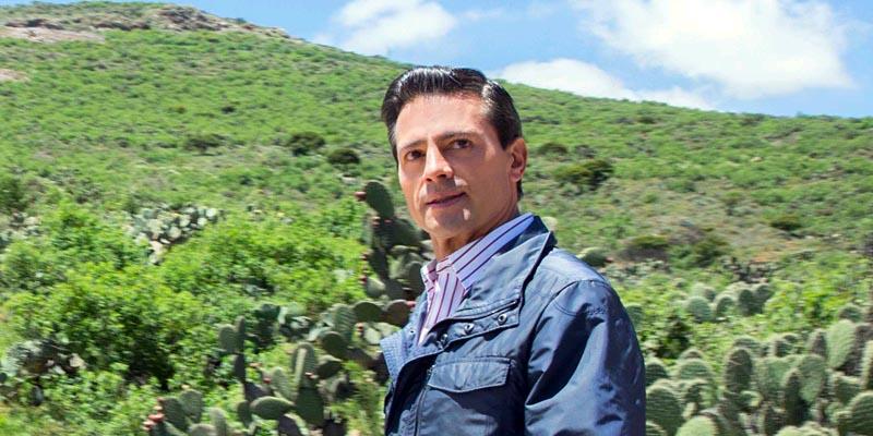 Algún día comprenderán mis decisiones: Peña Nieto