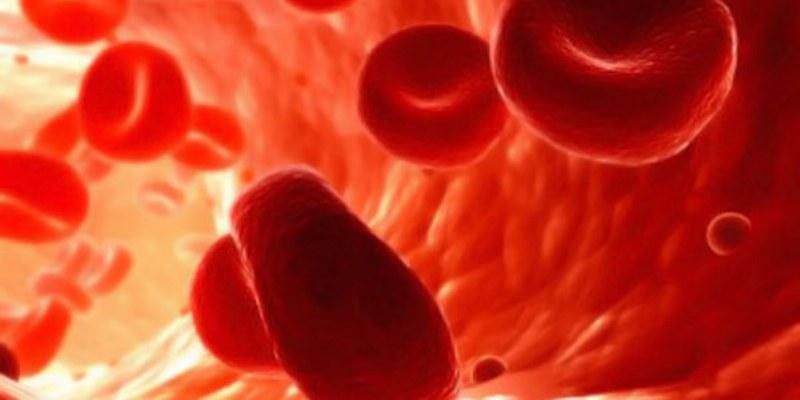 Células cancerosas dialogan a través de la sangre: científicos