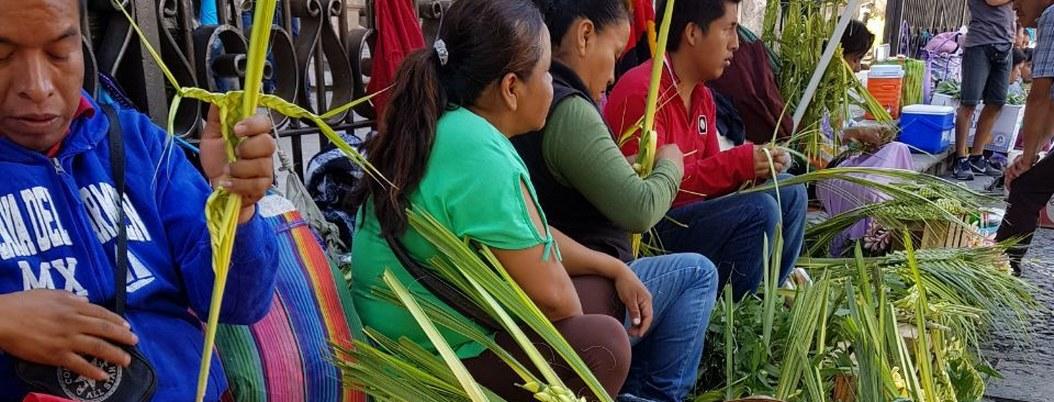 Tradición familiar, la fabricación de palmitas para el Domingo de Ramos 2