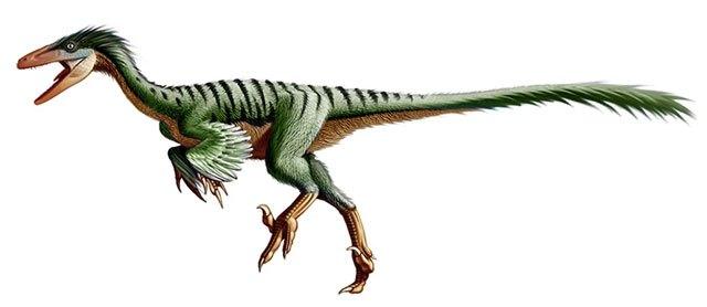 ¿Qué especies de dinosaurios habitaron en México? 14