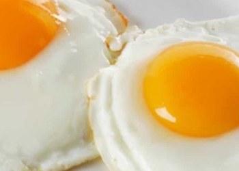 Huevo, almiento que ayuda mejorar tu coeficiente intelectual 1