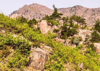 Coreas celebrarán aniversario de programa turístico a montaña Kumgang 1