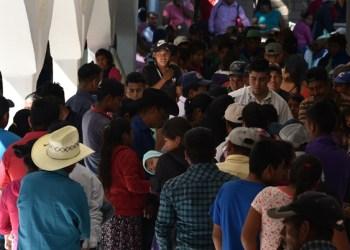 Jornaleros huyen de la pobreza sin ayuda de nadie en Guerrero 3